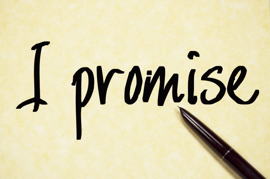 perfect promise statement - i promise