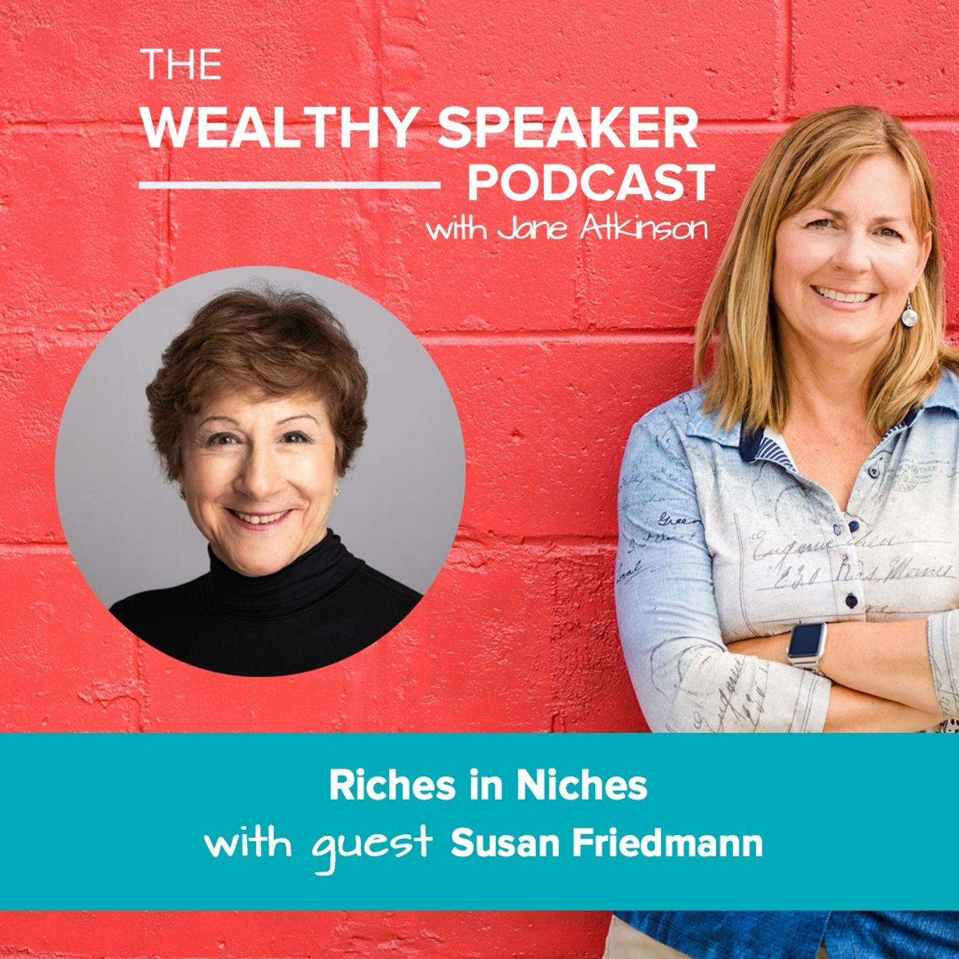 riches in niches with susan friedmann